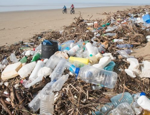 'Recycling in Australia is dead in the water': three companies tackling our plastic addiction